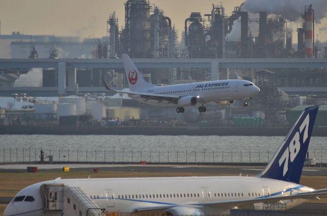 787とJAL新鶴丸737