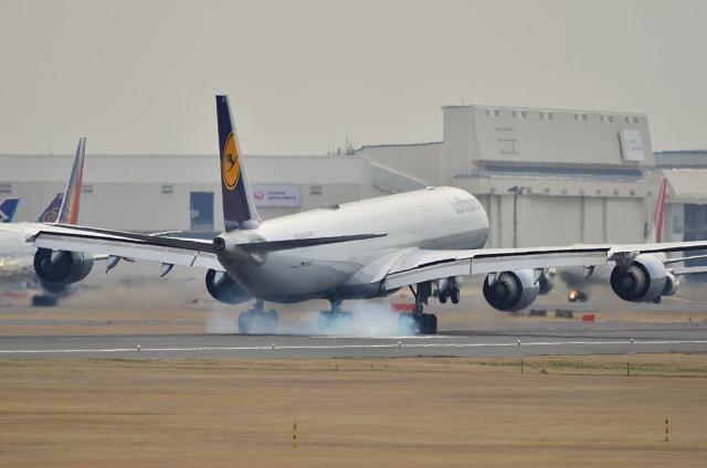 LH A340 8