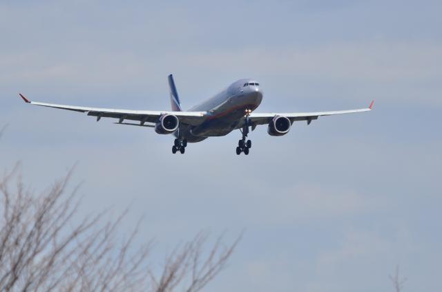 AFL A330 1