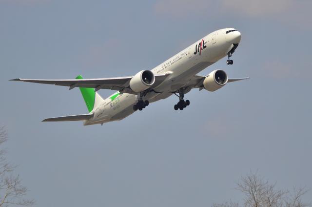 JAL 緑のサンアーク 1