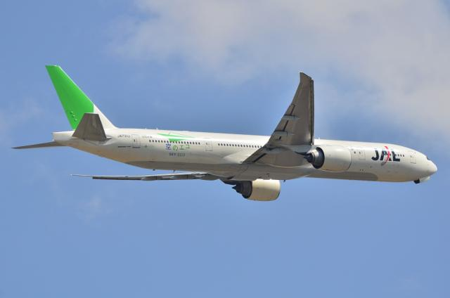 JAL 緑のサンアーク 3