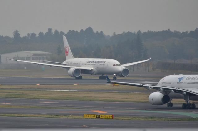 JAL B787 5
