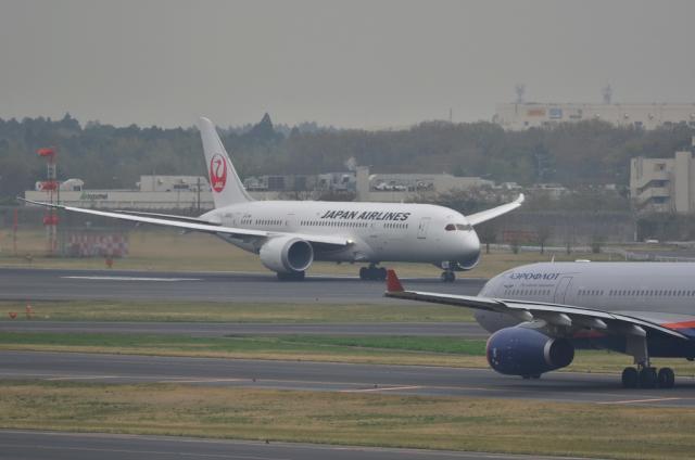 JAL B787 6