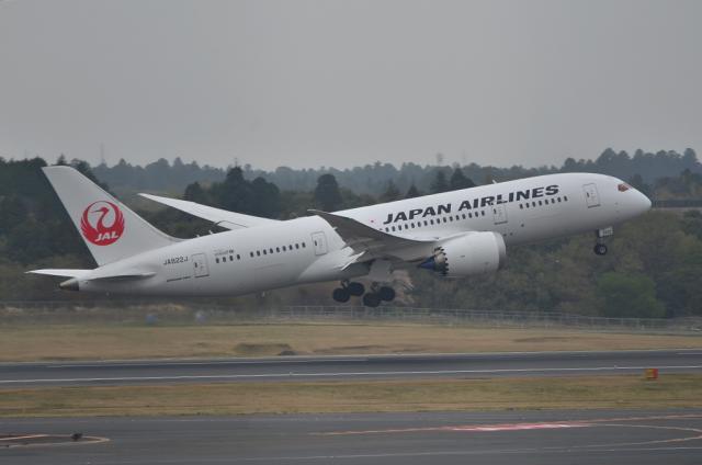 JAL B787 12
