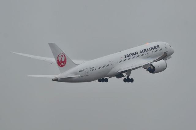 JAL B787 15