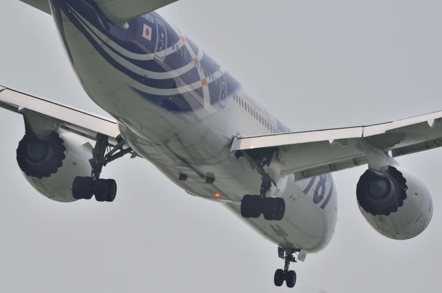 JA801A 5