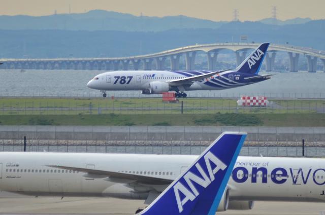 ANA B787 2