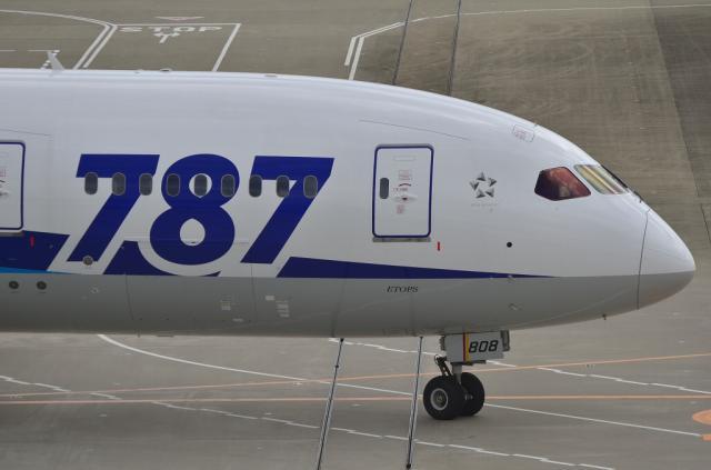 ANA B787 5