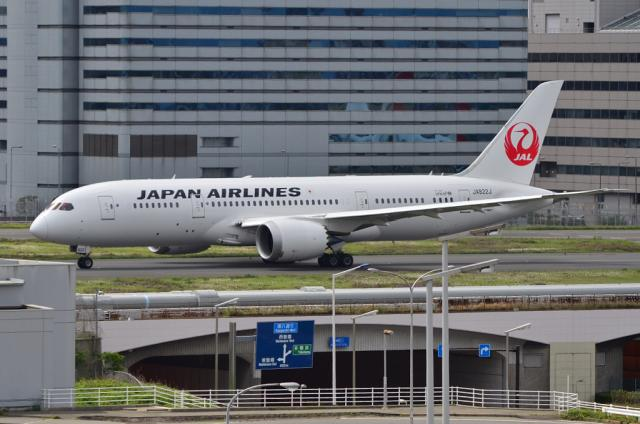 JAL 787 3
