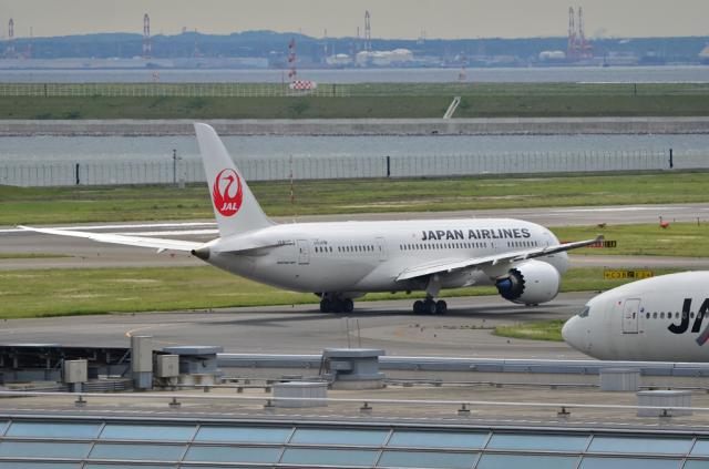 JAL 787 5