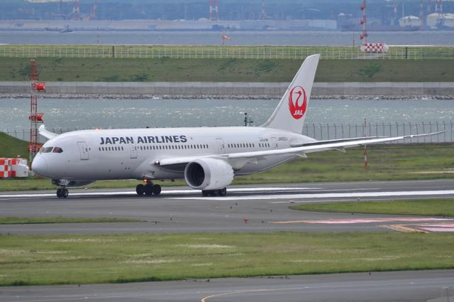 JAL 787 6