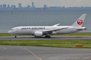 JAL 787 7-1
