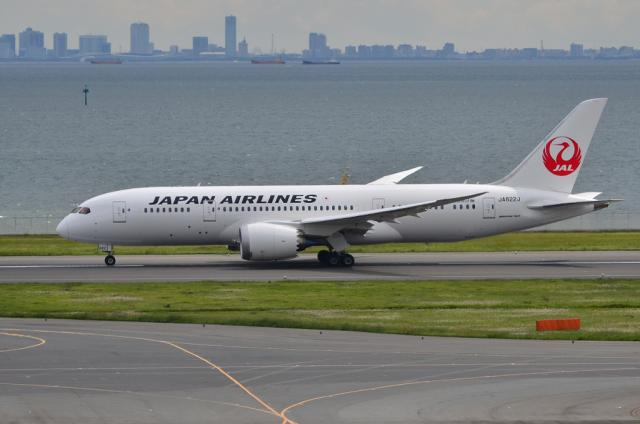 JAL 787 7