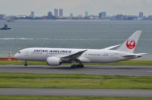 JAL 787 8-1