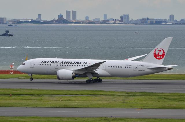 JAL 787 8