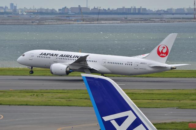 JAL 787 9