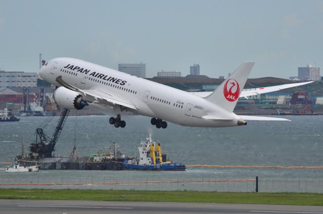 JAL 787 10