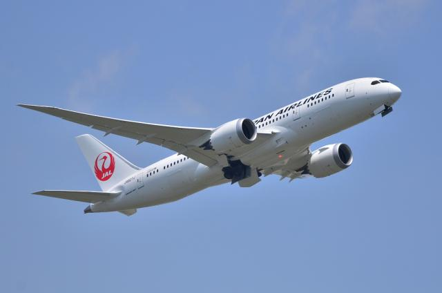 JAL787 1