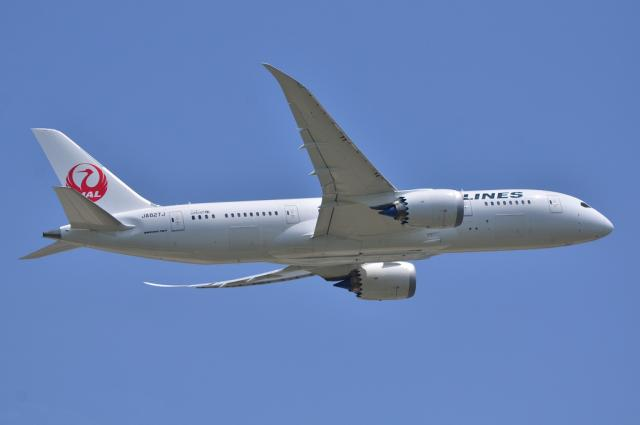JAL787 2