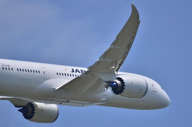 JAL787 3
