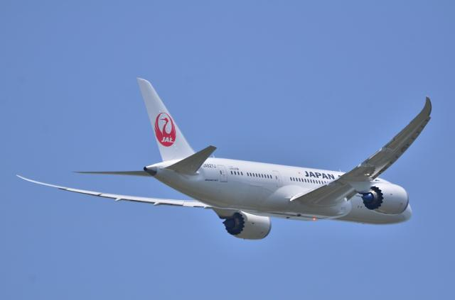 JAL787 4