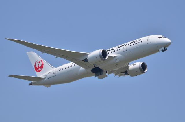 JAL787 6
