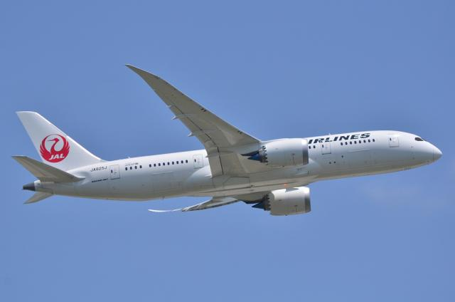 JAL787 7