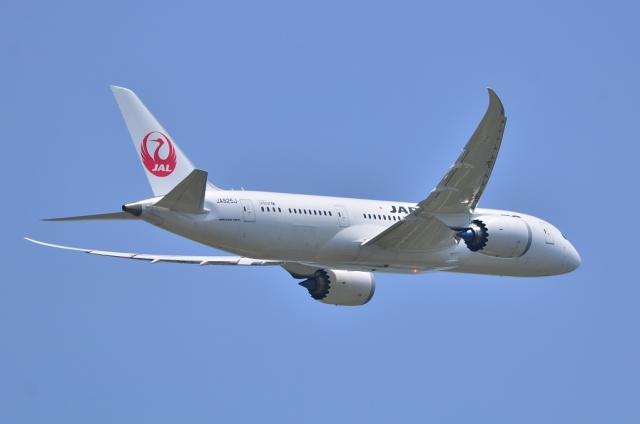 JAL787 8