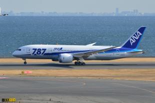 ANA 787 1