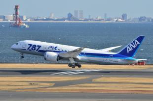 ANA 787 2