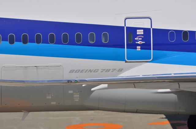 ANA 787 ロゴ