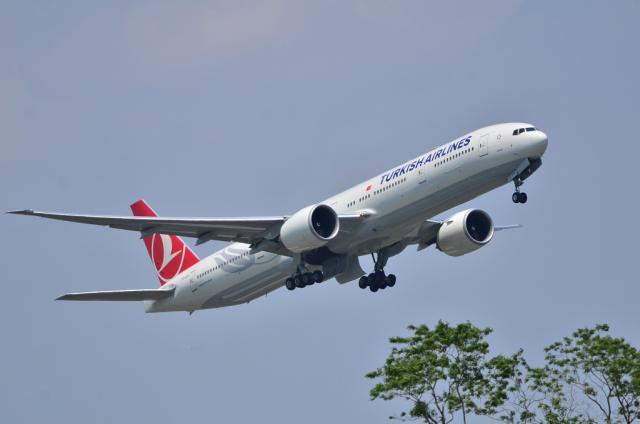 TK A330 1