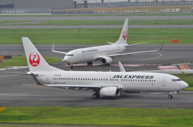 JAL 7