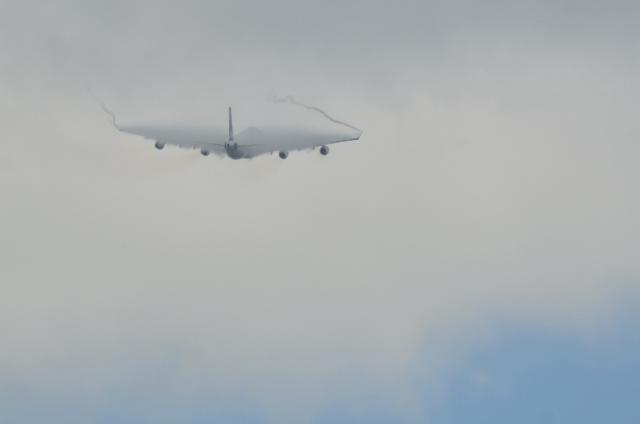 SAS A340 7