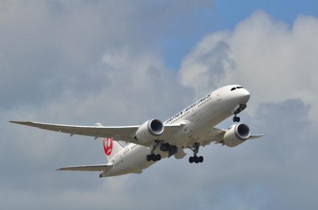 JAL B787 1