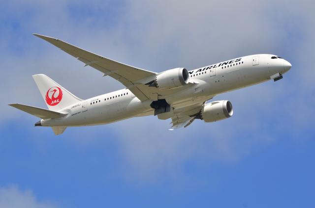 JAL B787 3