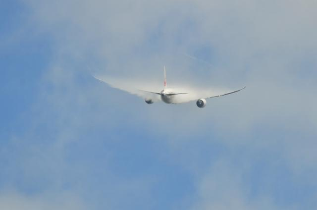 JAL B787 10