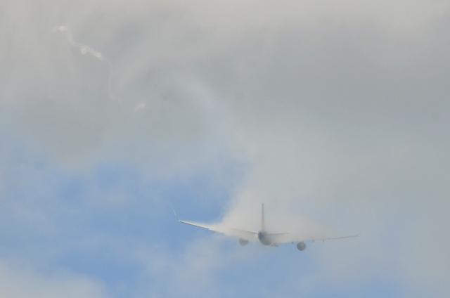 VN A330 11