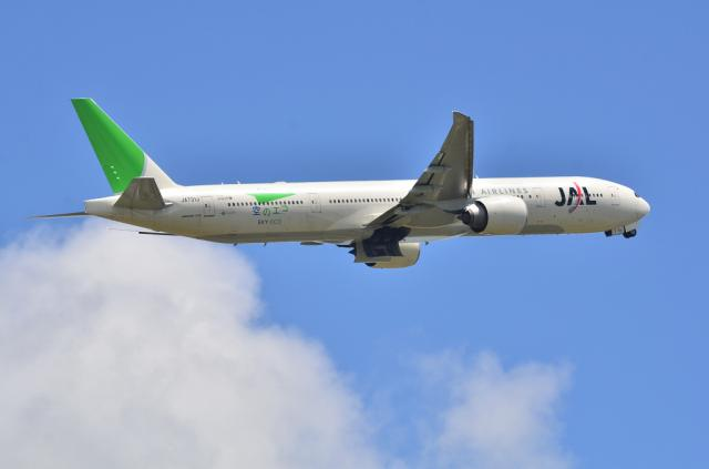 JAL 11