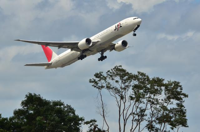 JAL 13