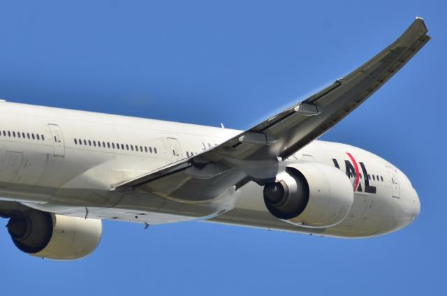JAL 14