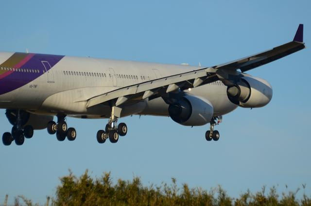 D72_7478.jpg